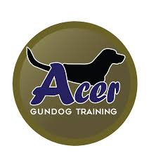 Acer, Gundog, Training, Franchise